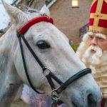 Het paard van Sint